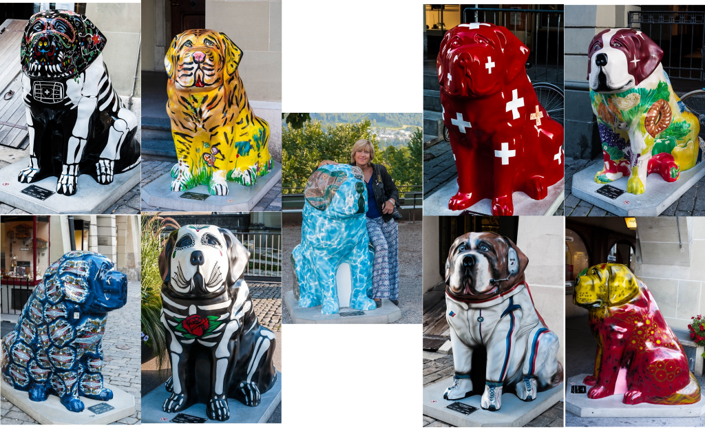Il Cane San Bernardo: Mostra sui Cani San Bernardo