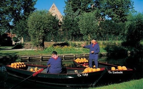 barche con formaggiai