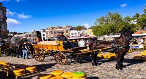 Un tour al formaggio  – Olanda
