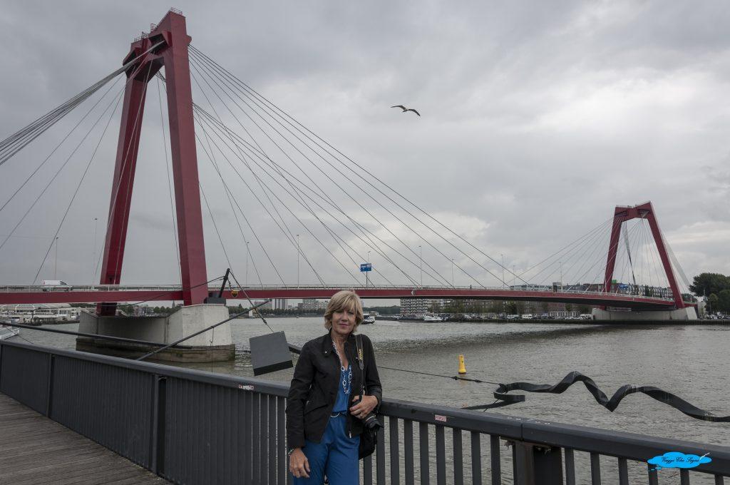 Il Willemsbrug: Il vecchio Ponte Rosso