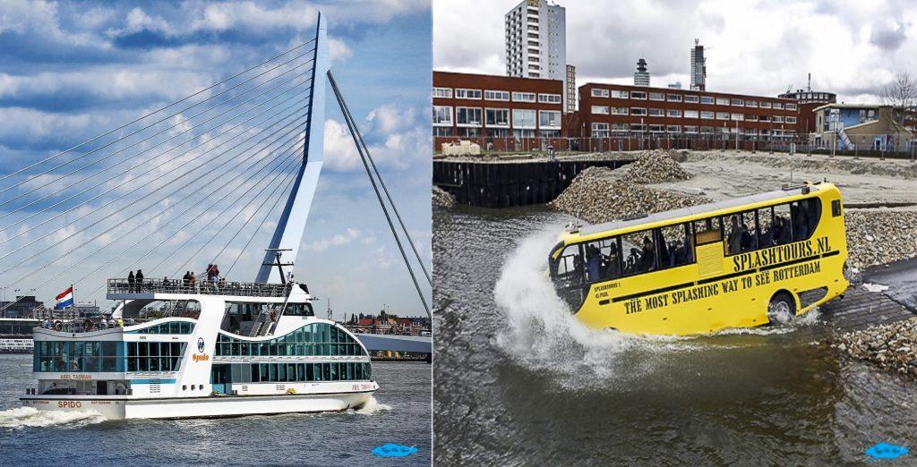 Rotterdam cosa vedere in 3 giorni: spido-e-splash