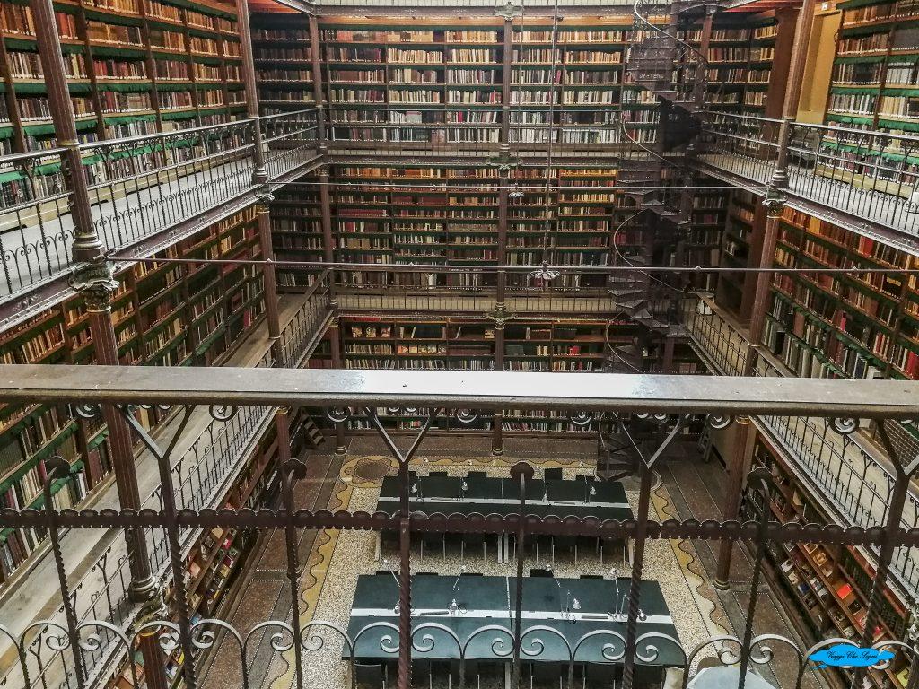 la biblioteca del Rijskmuseum di Amsterdam