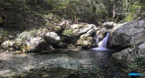 Le Oasi WWF del fiume Bussento