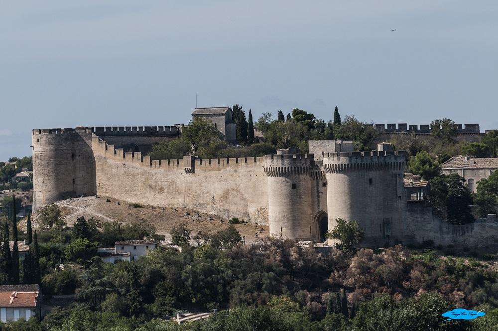 avignone: cosa vedere in due giorni il forte di Sant'Andrea