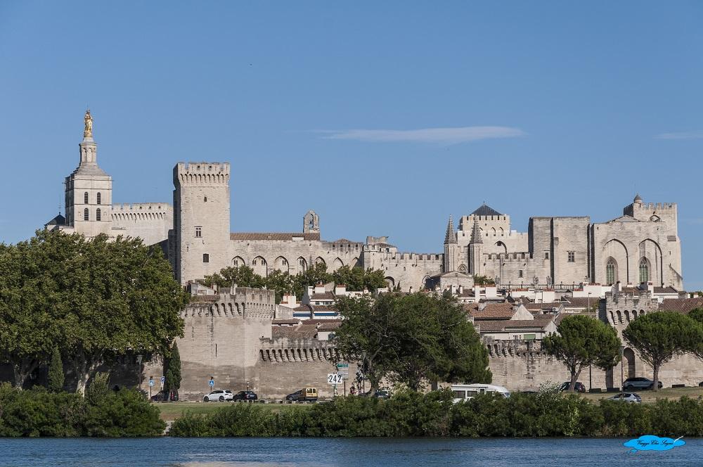 Avignone: cosa vedere in due giorni il palazzo dei papi visto da Villeneuve